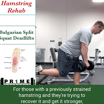 hamstring strain recovery physical therapy pineville